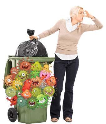 Wheelie bin cleaning and washing