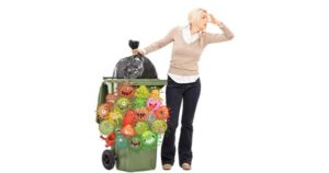 Wheelie bin cleaning and washing